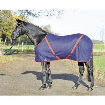 pferdedecken online kaufen doch welche pferdedecke ist die richtige. Black Bedroom Furniture Sets. Home Design Ideas