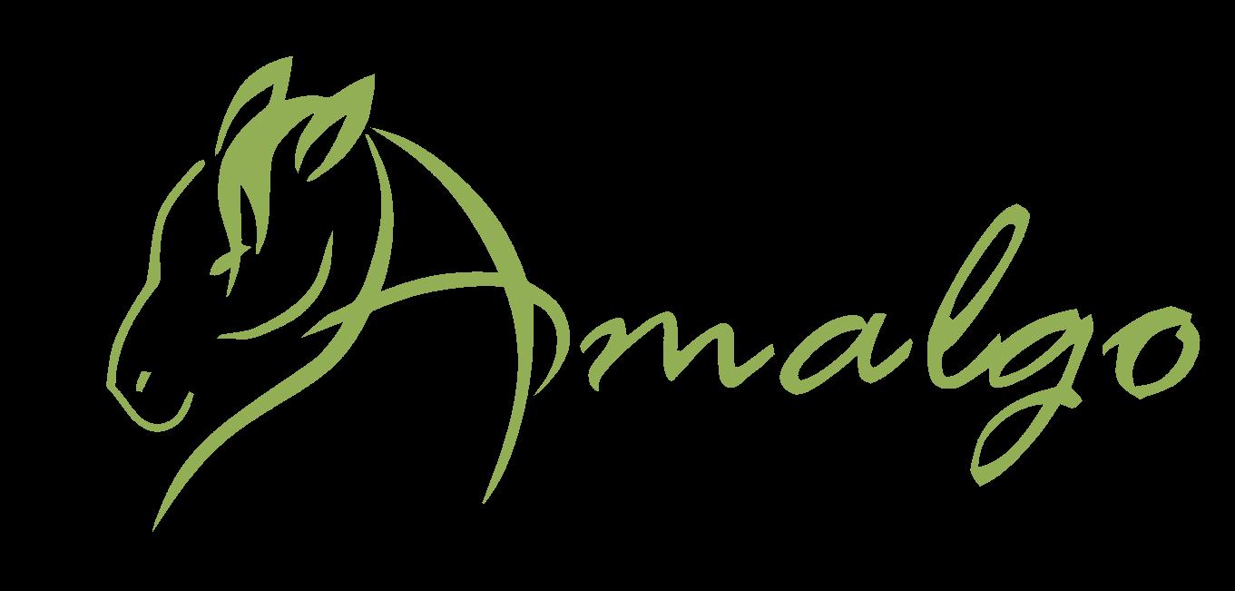 Amalgo.de – Für Pferd und Reiter