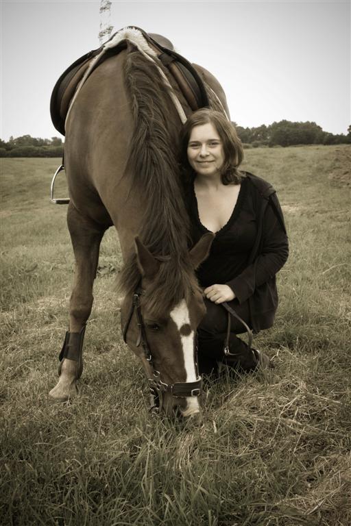Ein Tierheilpraktiker erstrebt die Harmonie aller Ebenen im Pferd, nur dann ist die absolute Gesundheit des Tieres möglich.