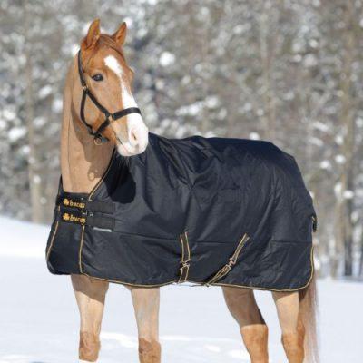 Winterdecken Thermodecken F 252 R Pferde Amalgo De F 252 R