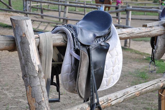 Eine zusätzliche Unterlage zwischen Satteldecke und Pferd