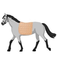 Schabracken für Pferde
