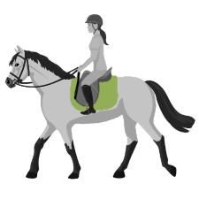Sattelunterlagen für Pferde